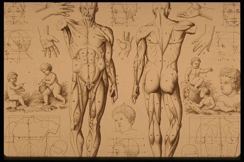 7 | Старинные гравюры. Часть1 | ARTeveryday.org