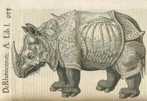 1 | Конрад Геснер. Historiae Animalium - Истории животных | ARTeveryday.org