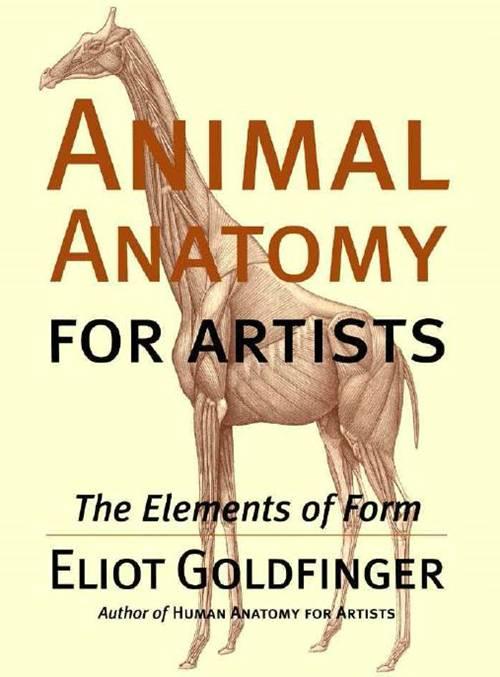 1 | Анатомия животных для художников | ARTeveryday.org