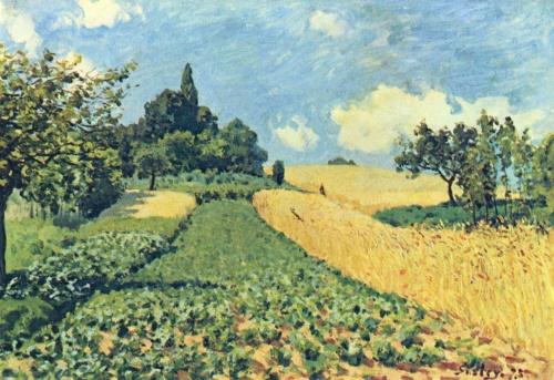 Пшеничное поле на холме в Аржантейе. 1873г. 50x73cm