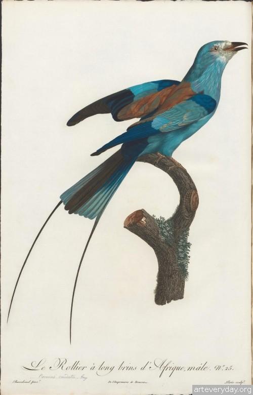 6 | Райские птицы | ARTeveryday.org